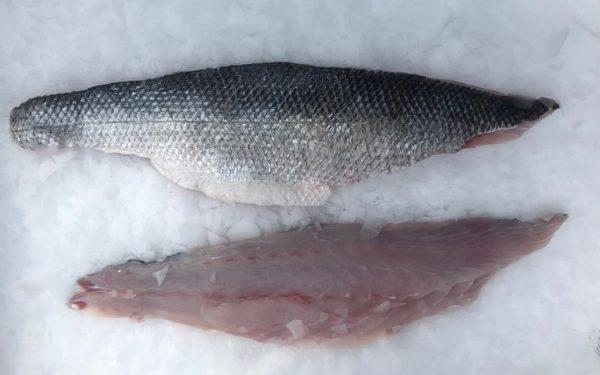 filet_bar_sauvage_sans_arrête-fait-main-sirènes-boulogne-petits_bateaux-pêche-poisson_frais