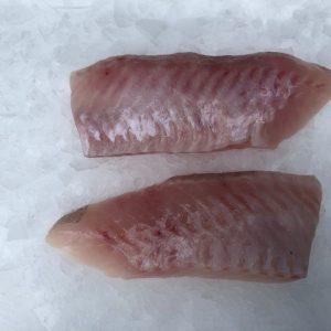 dos-sébate-sirenes-boulonnaises-filet_coupé_main-boulogne_sur_mer-poisson_frais
